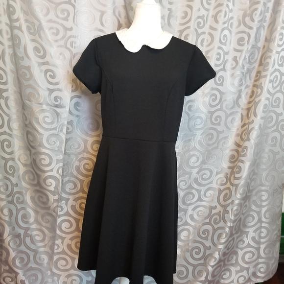 Torrid textured skater dress w/Peter pan collar